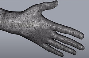 Screenshot of a hand modelled in Rhino3d showing the mesh created